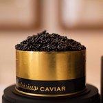 Calivsius Caviar