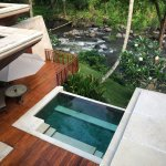 Four Seasons Resort Bali at Sayan Aufnahme