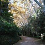 Photo of Jardin Botanico Historico La Concepcion