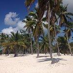 Photo of Mariposa Tours