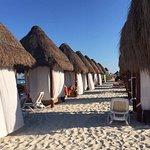 Foto de Secrets Playa Mujeres Golf & Spa Resort