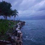 Foto de Isla del Pirata