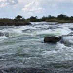 Foto di AVANI Victoria Falls Resort