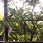 Photo of Luz en el Cielo Eco-B&B/Hostel