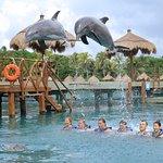 Despedida de los delfines