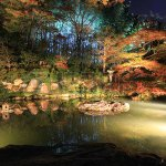 autumn night in shoren-in temple