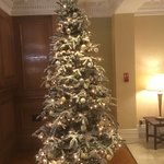 The Christmas Tree is a little too tall for the reception lobby!!