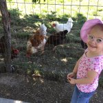 Deanna Rose Children's Farmstead resmi