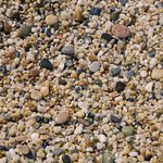 Kleopatra Beach Foto