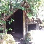Photo of Buried Village of Te Wairoa