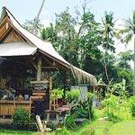 Mai Organic Farm