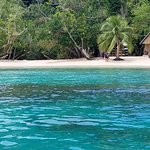 Snorkeling available right off the beach, or on free guided tours (via a short boat ride)