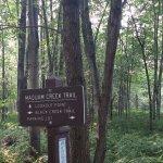 Maquam Creek Trail sign