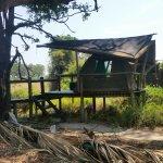 Photo of Oddballs' Palm Island Luxury Lodge