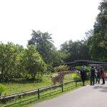 Photo of Zoo Taiping & Night Safari