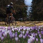 Bike and Hike Academy Meranerland