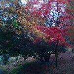 Acer Valley - November 2017
