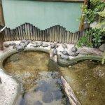 Museu a Ceu Aberto da Tartaruga Marinha Picture