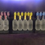 The Various Bottles of Gin