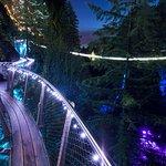 Cliffwalk at Canyon Lights