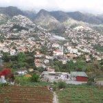 Lovely Madeira