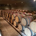 ภาพถ่ายของ Felton Road Wines