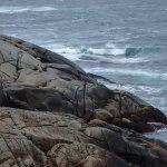 Foto de Peggy's Cove Lighthouse
