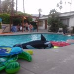 Too much fun at the pool