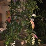 Árvore com orquídeas na entrada do restaurante