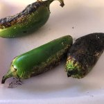 Grilled Pepper (VERY SPICY)