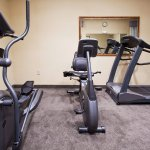 Holiday Inn Express Hotel & Suites Clearwater / US 19N resmi