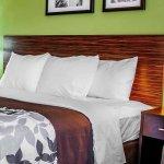 Photo de Sleep Inn & Suites Lakeside