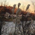 Foto de Robert E. Lee Memorial Park