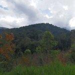 Photo of Pooh Eco Trekking Day Tours