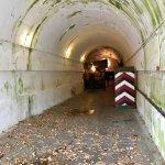 Billede af Jersey War Tunnels - German Underground Hospital