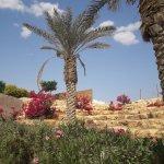 Photo de Qasr al-Yahud Baptismal Site