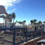 Photo of Muscle Beach