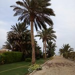 Photo of Zahabia Hotel and Beach Resort