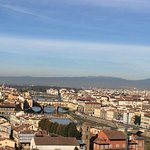 Pictures from our amazing day in Pisa, Florence, and the olive and winery orchard with Diego!