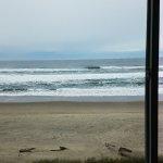 Φωτογραφία: Sailor Jack Ocean Front Motel