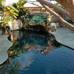 Billede af Kokomo Botanical Resort & Spa