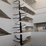 Museo di Arte Moderna e Contemporanea di Trento e Rovereto Foto