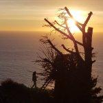 Photo de Treebones Resort