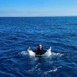 Billede af Alton's Dive Center