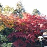Photo of Takahata Fudoson Kongo-ji Temple