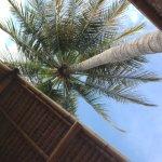 Rinjani Beach Eco Resort Foto