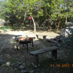Firepit and benches to watch the deer
