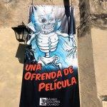 Foto de Museo Dolores Olmedo Patino