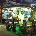 Dinosaur Museum Photo