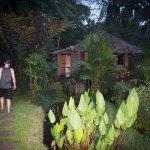 صورة فوتوغرافية لـ Bali Eco Stay Bungalows